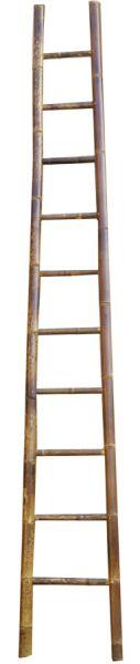 Leiter aus Bambus