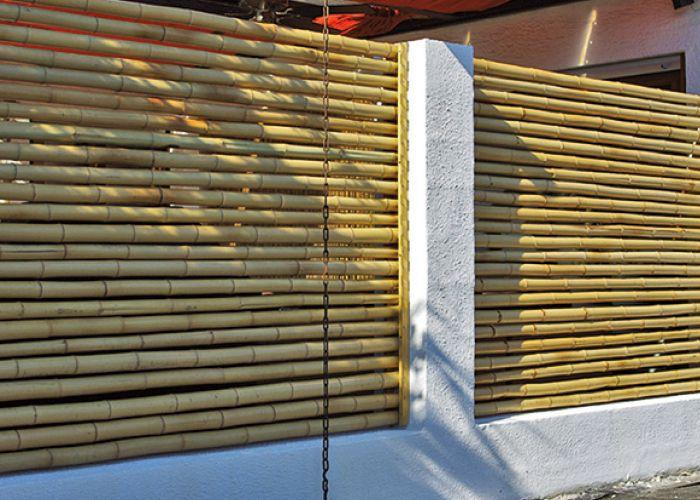 Bambus Bambus Kultur