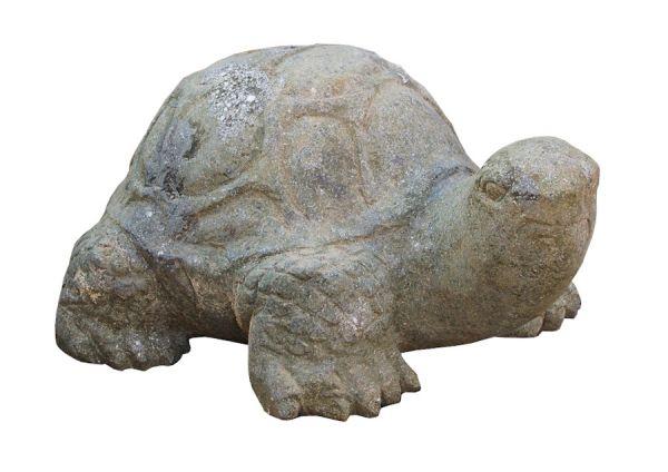 Schildkröte aus Basanit geschlagen