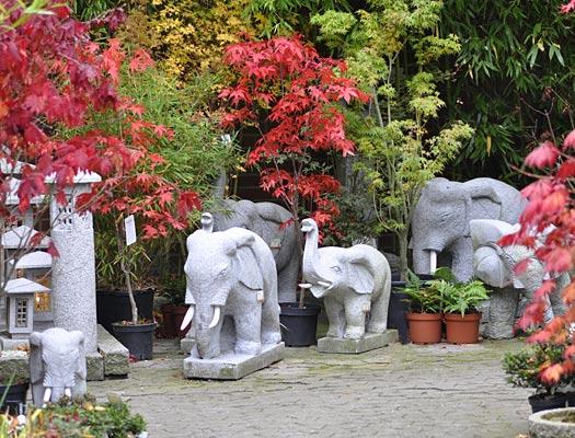 Elefanten, Schildkröten, Fische, Eulen, Frösche, ...